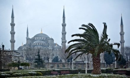 The Blue Mosque & The Ayasofya