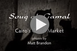 Multimedia: The Camel Market of Cairo