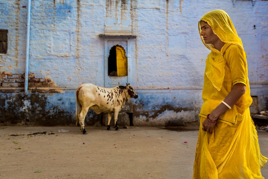 Jodhpur: The Blue City and Much More…