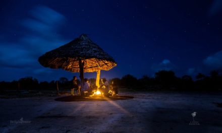 Wallpaper: Kenya at Night