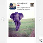 The Instax Share app allows you to print from your social media account.