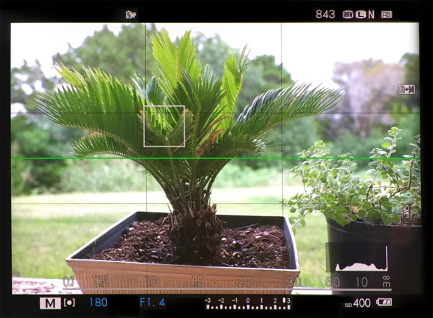 An EVF will give you the same data a DSLR view finder will give you with one important difference. The EVF gives you a real-time depth of field preview.