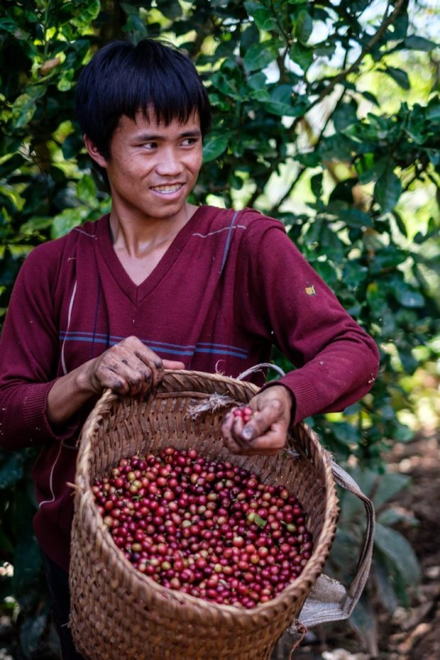 One of the many hill tribes farmers partnering with Saffron Coffee.